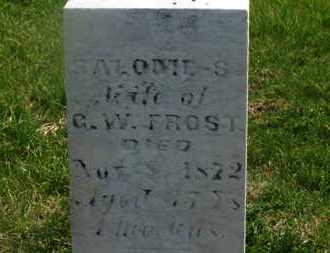 FROST, G.W. - Delaware County, Ohio | G.W. FROST - Ohio Gravestone Photos