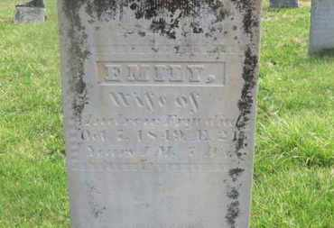 FRYE, EMILY - Delaware County, Ohio | EMILY FRYE - Ohio Gravestone Photos