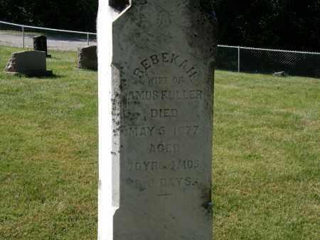 FULLER, AMOS - Delaware County, Ohio | AMOS FULLER - Ohio Gravestone Photos