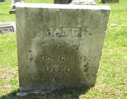GILLIES, JANE - Delaware County, Ohio | JANE GILLIES - Ohio Gravestone Photos