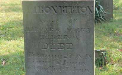 HARRISON, AARON R. - Delaware County, Ohio   AARON R. HARRISON - Ohio Gravestone Photos