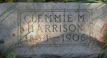 HARRISON, CLEMMIE M. - Delaware County, Ohio | CLEMMIE M. HARRISON - Ohio Gravestone Photos