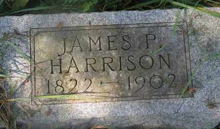 HARRISON, JAMES P. - Delaware County, Ohio | JAMES P. HARRISON - Ohio Gravestone Photos