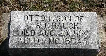 HAUCK, OTTO F. - Delaware County, Ohio   OTTO F. HAUCK - Ohio Gravestone Photos