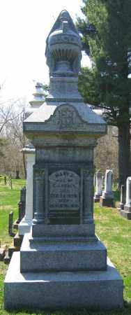 HEALY, MAY J - Delaware County, Ohio | MAY J HEALY - Ohio Gravestone Photos