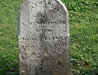 HEMMINGER, A. - Delaware County, Ohio   A. HEMMINGER - Ohio Gravestone Photos