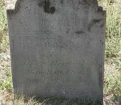 HERD, ALBERT - Delaware County, Ohio | ALBERT HERD - Ohio Gravestone Photos