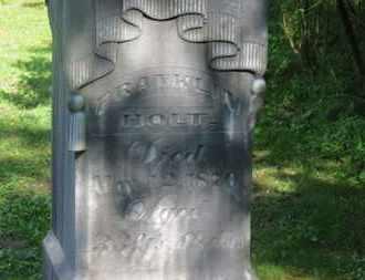 HOLT, FRANKLIN - Delaware County, Ohio | FRANKLIN HOLT - Ohio Gravestone Photos