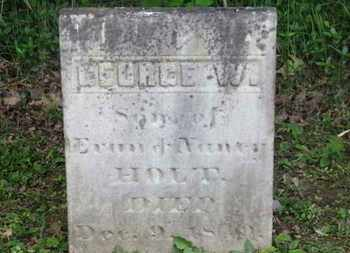 HOLT, GEORGE W. - Delaware County, Ohio | GEORGE W. HOLT - Ohio Gravestone Photos