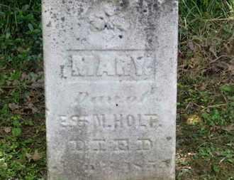 HOLT, MARY - Delaware County, Ohio | MARY HOLT - Ohio Gravestone Photos