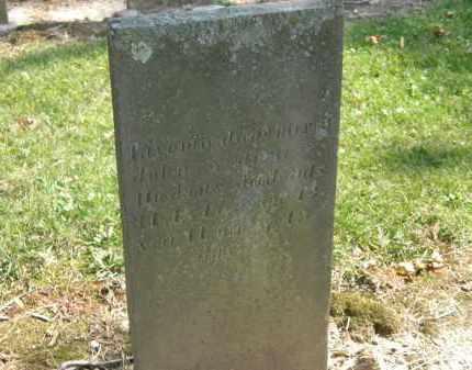 HOSKINS, JOHN - Delaware County, Ohio | JOHN HOSKINS - Ohio Gravestone Photos
