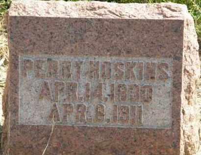 HOSKINS, PERRY - Delaware County, Ohio | PERRY HOSKINS - Ohio Gravestone Photos