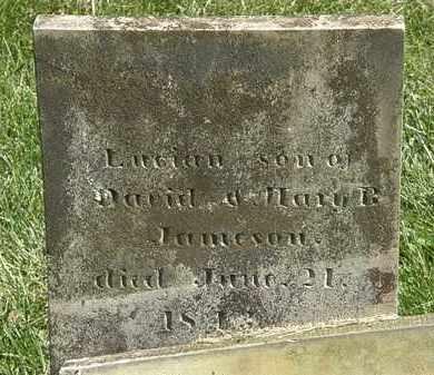 JAMESON, LUCIAN - Delaware County, Ohio | LUCIAN JAMESON - Ohio Gravestone Photos