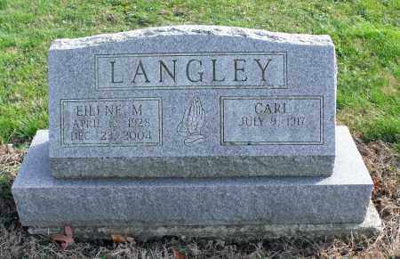 LANGLEY, CARL P. - Delaware County, Ohio | CARL P. LANGLEY - Ohio Gravestone Photos