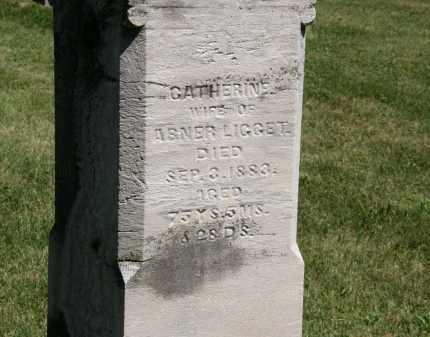 LIGGET, CATHERINE - Delaware County, Ohio | CATHERINE LIGGET - Ohio Gravestone Photos
