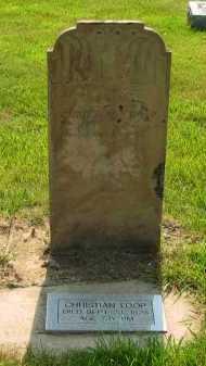 LOOP, CHRISTIAN - Delaware County, Ohio | CHRISTIAN LOOP - Ohio Gravestone Photos