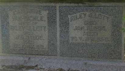 LOTT, CATHARINE - Delaware County, Ohio | CATHARINE LOTT - Ohio Gravestone Photos