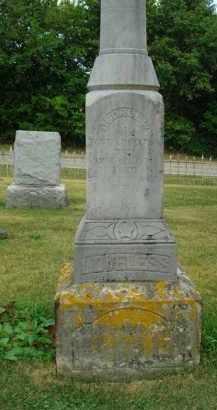 LOVELESS, GEORGE W. - Delaware County, Ohio   GEORGE W. LOVELESS - Ohio Gravestone Photos