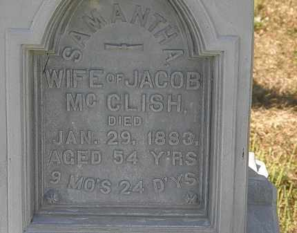 MCCLISH, JACOB - Delaware County, Ohio | JACOB MCCLISH - Ohio Gravestone Photos