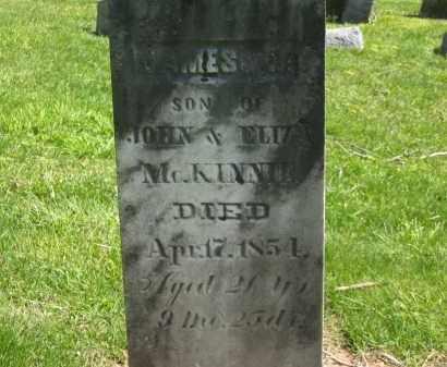 MCKINNIE, JAMES R. - Delaware County, Ohio | JAMES R. MCKINNIE - Ohio Gravestone Photos
