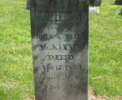 MCKINNIE, ELIZA - Delaware County, Ohio | ELIZA MCKINNIE - Ohio Gravestone Photos