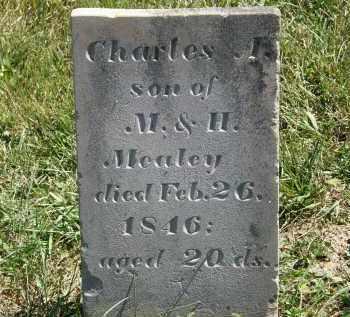 MEALEY, M. - Delaware County, Ohio | M. MEALEY - Ohio Gravestone Photos
