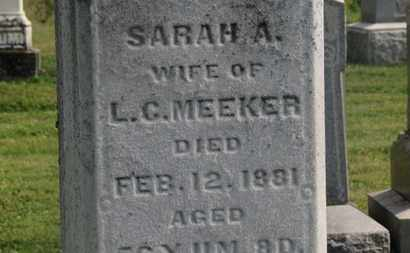 MEEKER, L.C. - Delaware County, Ohio   L.C. MEEKER - Ohio Gravestone Photos