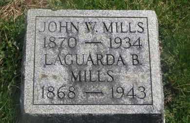 MILLS, JOHN W. - Delaware County, Ohio   JOHN W. MILLS - Ohio Gravestone Photos