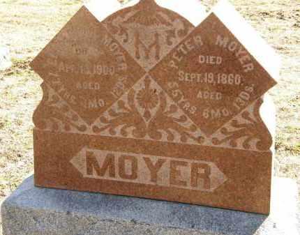 MOYER, PETER - Delaware County, Ohio   PETER MOYER - Ohio Gravestone Photos