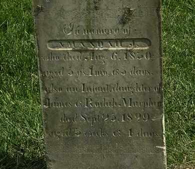 MURPHEY, RODAH - Delaware County, Ohio | RODAH MURPHEY - Ohio Gravestone Photos