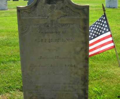 HIMROD, CATHARINE - Delaware County, Ohio | CATHARINE HIMROD - Ohio Gravestone Photos