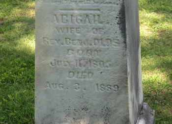 OLDS, ABIGAIL - Delaware County, Ohio | ABIGAIL OLDS - Ohio Gravestone Photos