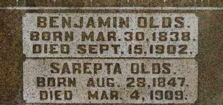 OLDS, SAREPTA - Delaware County, Ohio   SAREPTA OLDS - Ohio Gravestone Photos