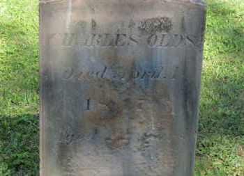 OLDS, CHARLES - Delaware County, Ohio | CHARLES OLDS - Ohio Gravestone Photos