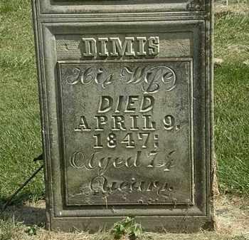 PARKER, DIMIS - Delaware County, Ohio | DIMIS PARKER - Ohio Gravestone Photos
