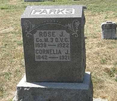 PARKS, ROSE J. - Delaware County, Ohio   ROSE J. PARKS - Ohio Gravestone Photos