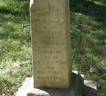 PECK, ELIZABETH A. - Delaware County, Ohio | ELIZABETH A. PECK - Ohio Gravestone Photos