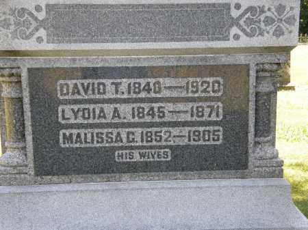 PERKINS, DAVID T. - Delaware County, Ohio | DAVID T. PERKINS - Ohio Gravestone Photos
