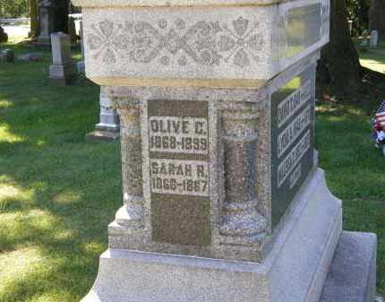 PERKINS, OLIVE C. - Delaware County, Ohio | OLIVE C. PERKINS - Ohio Gravestone Photos