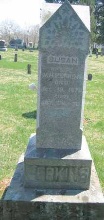 PERKINS, SUSAN - Delaware County, Ohio | SUSAN PERKINS - Ohio Gravestone Photos
