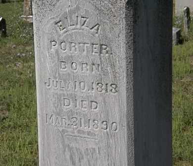 PORTER, ELIZA - Delaware County, Ohio | ELIZA PORTER - Ohio Gravestone Photos