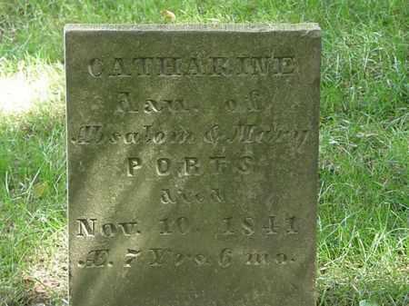 PORTS, CATHARINE - Delaware County, Ohio | CATHARINE PORTS - Ohio Gravestone Photos