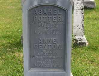 POTTER, ASAHEL - Delaware County, Ohio | ASAHEL POTTER - Ohio Gravestone Photos