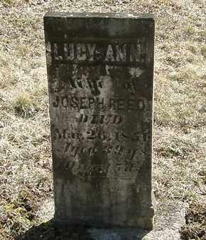 REED, LUCY ANN - Delaware County, Ohio | LUCY ANN REED - Ohio Gravestone Photos