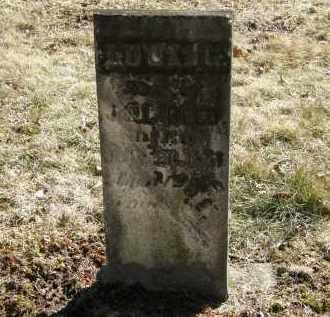 REED, L. - Delaware County, Ohio | L. REED - Ohio Gravestone Photos