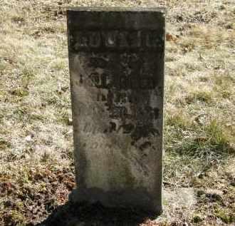 REED, L. - Delaware County, Ohio   L. REED - Ohio Gravestone Photos