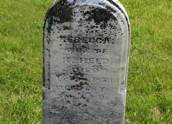 REED, REBECCA - Delaware County, Ohio | REBECCA REED - Ohio Gravestone Photos