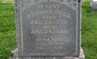REED, ORPHA - Delaware County, Ohio | ORPHA REED - Ohio Gravestone Photos