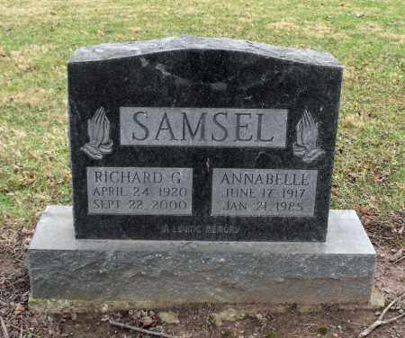 SAMSEL, RICHARD G. - Delaware County, Ohio | RICHARD G. SAMSEL - Ohio Gravestone Photos