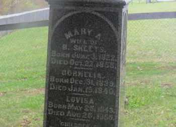 SHEETS, MARY A. - Delaware County, Ohio | MARY A. SHEETS - Ohio Gravestone Photos